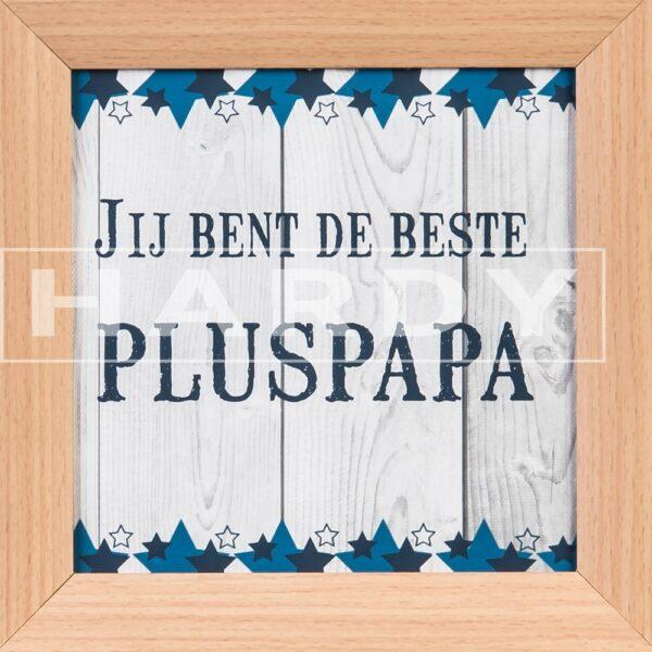 Pluspapa