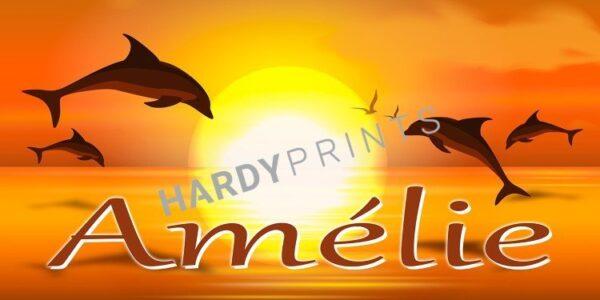 My-Canvas 'Dolfijn zon' met je eigen naam