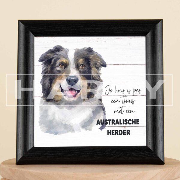 Je huis is pas een thuis met een Australische Herder