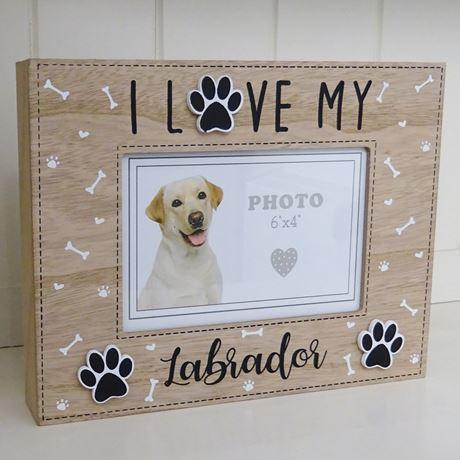 I love my Labrador - Kader - rashond - hondenliefhebber